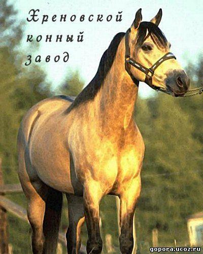 «Самая Страшная Тюрьма В России Фильм» / 1994