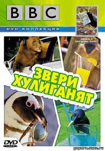 Кино Ввс Живая Природа