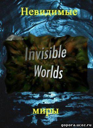 Discovery science невидимые миры наш мир 3 из